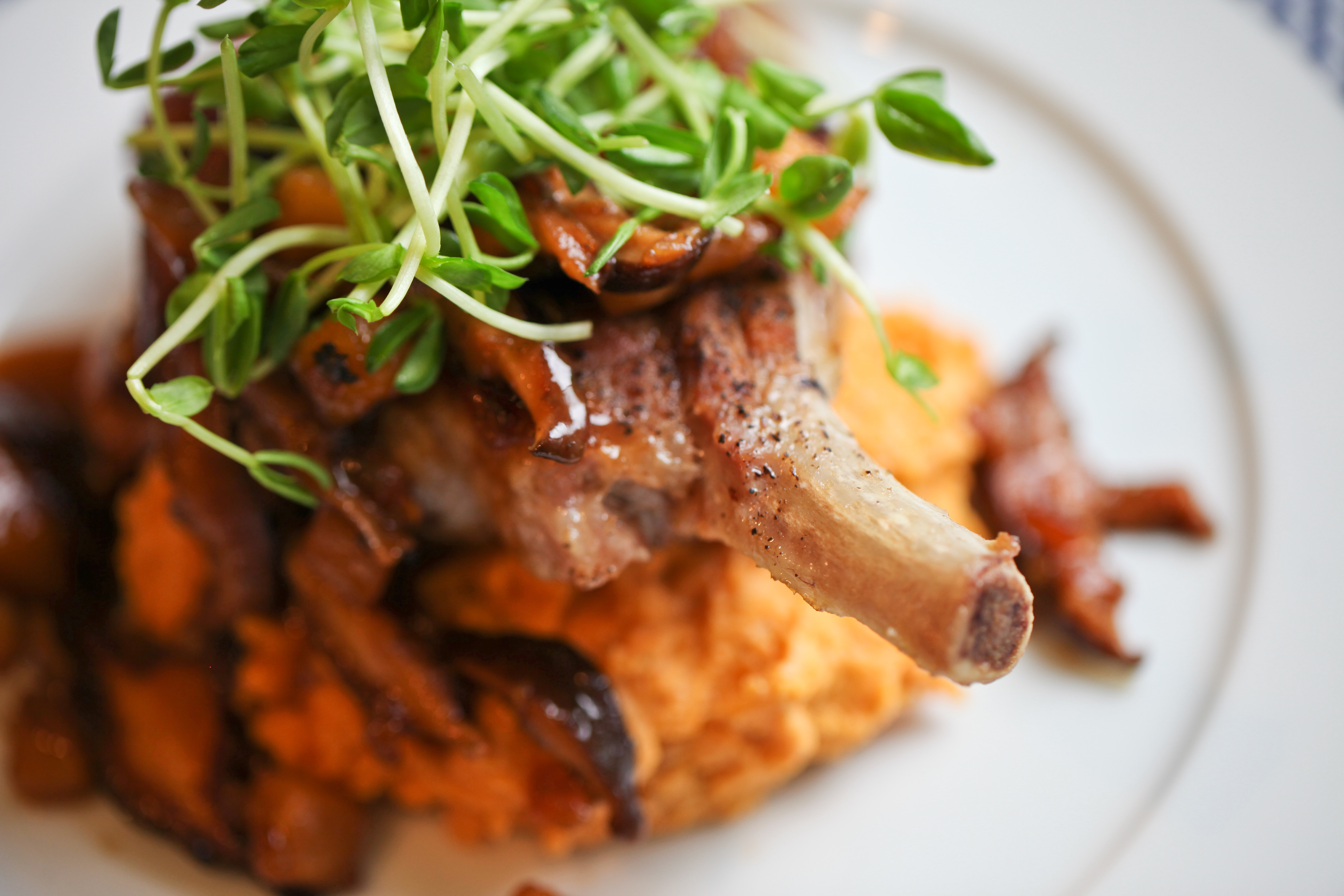 Apple Mushroom Sauce over Pork Chops and Mashed Sweet Potatoes – $3 ...